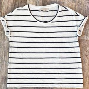 Loft White and blue stripped shirt